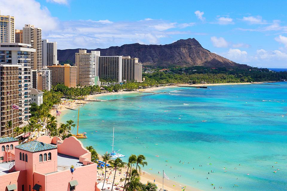 参加者のみなさまには豪華商品をご用意!抽選でハワイ旅行もプレゼント!